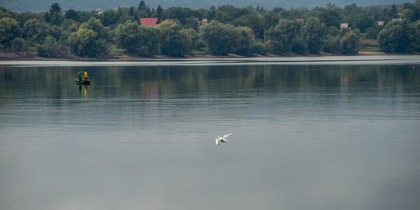 The reservoir of Fehérvárcsurgó
