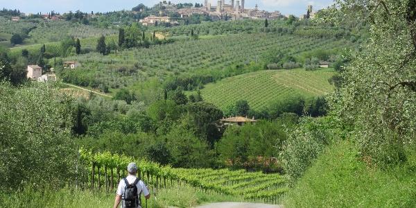 Uitzicht op de torens van San Gimignano