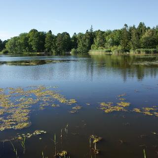 Deixlfurter See