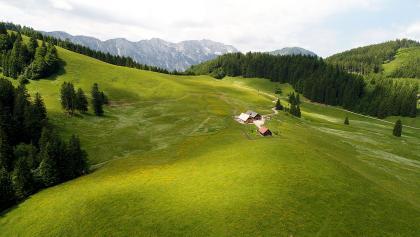 Ebenforstalm mit Sengsengebirge © Nationalpark Kalkalpen_Gerald Egelseer