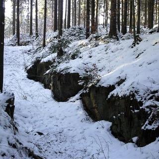Steinbüschel - Friedrich August Höhe im Winter