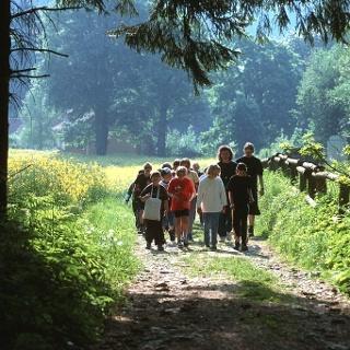 Der Natur auf der Spur - Gruppen werden in den Berg geführt, um etwas über die Natur zu lernen