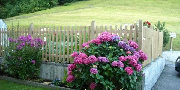 ein schöner Blumengruß vor dem Haus
