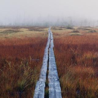 Patvinsuo_Nationalpark_Finland