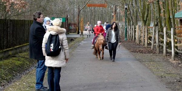 Lovagolhatsz is a Bagolyvár Vadasparkban