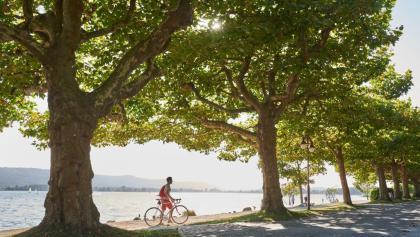 Radfahrer an der Seepromenade Radolfzell