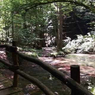 Brücke im Strümpfelbachtal