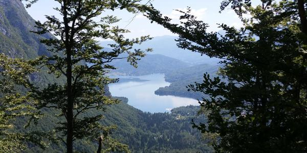 Blick auf den Wocheiner See