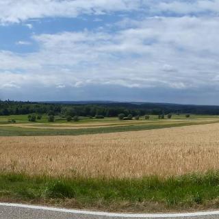 Panoramablick am NSG Hörnle und Geißberg