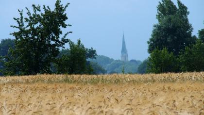 x13 Altenberger Kirche