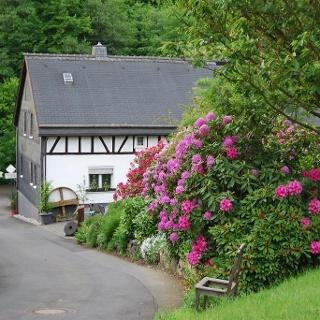 Dickendorfer Mühle
