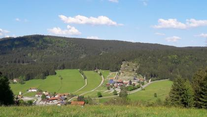 Blick nach Grün vor Maibrunn