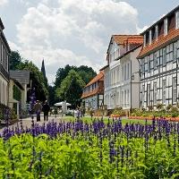 Hauptachse im Gräflichen Park Bad Driburg