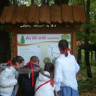 Élő erdő tanösvény