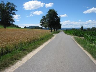 Radweg Worblingen - Ramsen