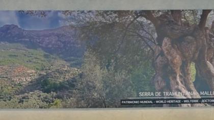 Plakat am Flughafen