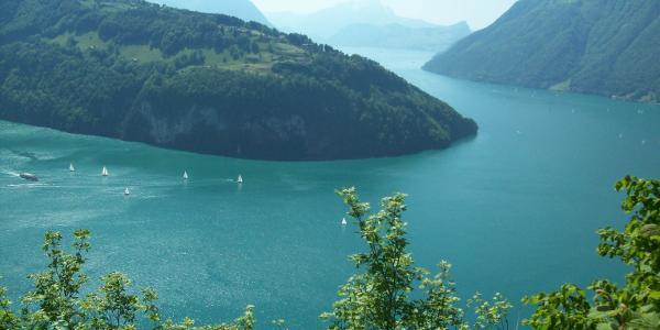 Urner und Vierwaldstättersee, oben Seelisberg