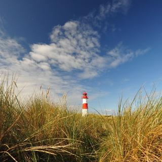 Leuchtturm List-West in den Dünen