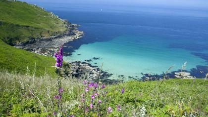 Along the South West Coast Path