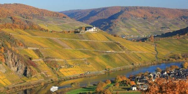 Blick auf Mosel und Marienburg