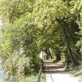 Rheinuferweg Waldshut