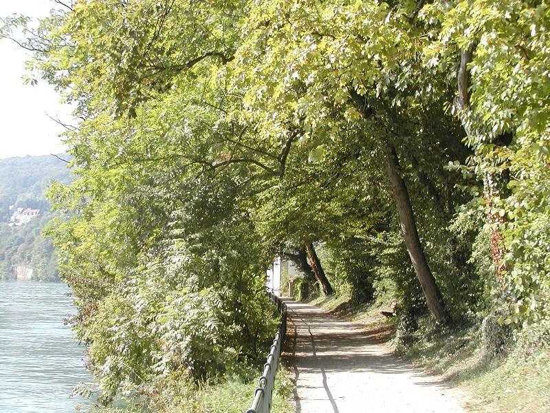 RouteWT 15 - Rheinlandschaft RadRundWeg