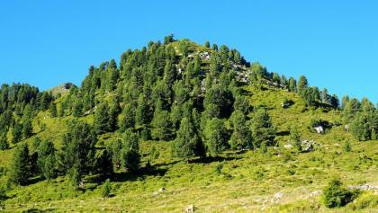 Rauher Kopf 2111m, von der Peter-Anich-Hütte