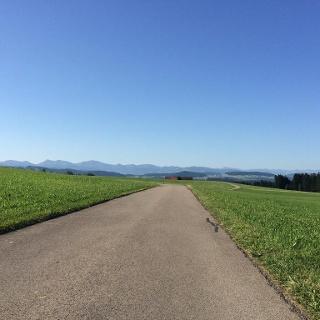 Isnyberg mit Blick auf die Allgäuer Alpen