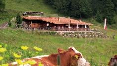Daimerweg – Kellerbauerweg – Gorner Joch – Pircher Alm (bewirtschaftet) – Weißenbach