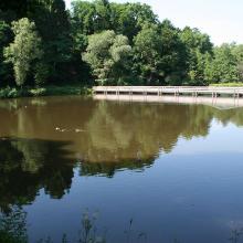 Engelgrundweiher kurz vor Hüttersdorf