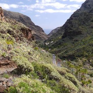Blick in ein fruchtbares Tal auf La Gomera