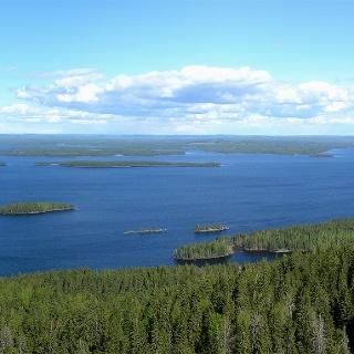 Aussicht auf den Pielinen-See