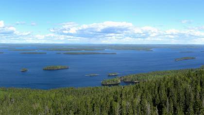 View on Lake Pielinen