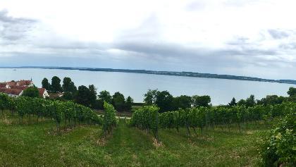 Blick über den Bodensee