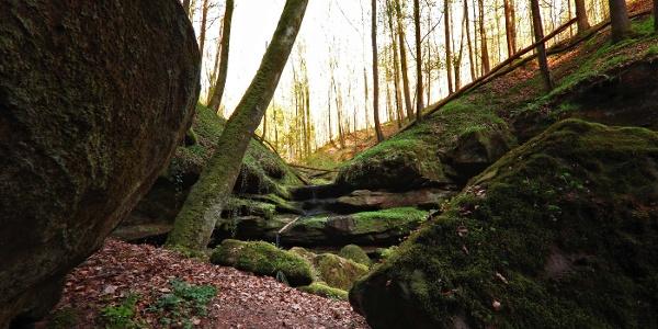 Aufstieg Klamm mit Ausblick Breitsitterwald