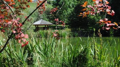 Naturschutzgebiet Heimbachaue
