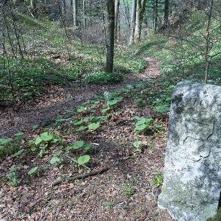 Der Renggpass mit dem Grenzstein