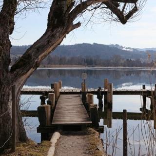 Footbridge at Pfäffikersee