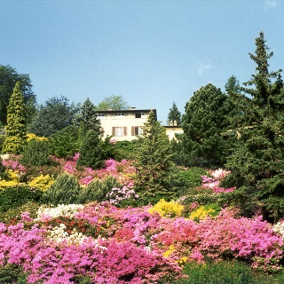 A glimpse of the San Grato Botanical Park