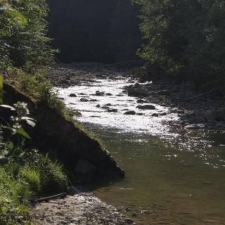 Wasserweg Goldach