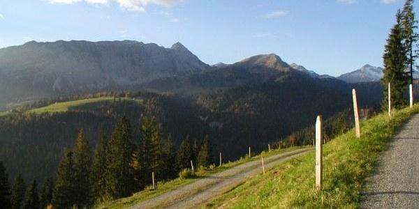 Alp Honegg mit Blick auf Giswilerstock und Rothorn