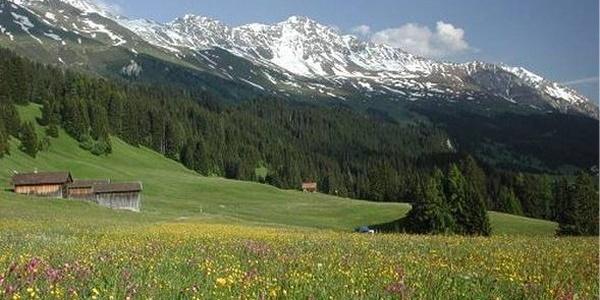 Mittelberg (1525 m ü.M), nördlichster Punkt