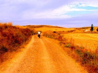 abgemähte Getreidefelder in der Meseta