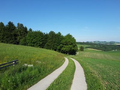 Schöner Weg
