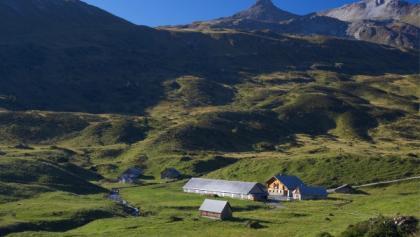 Alp Fursch - idyllische Voralpenlandschaft