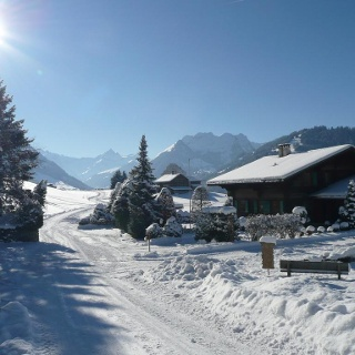 Sunny situated winter walk