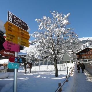 Schönried village