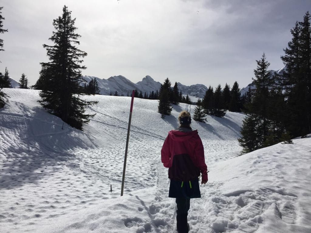 Chänelegg Trail