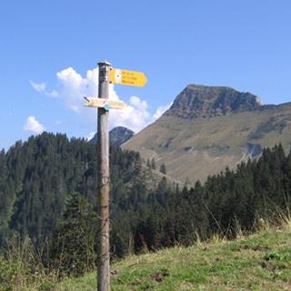 Panorama gourmet trail