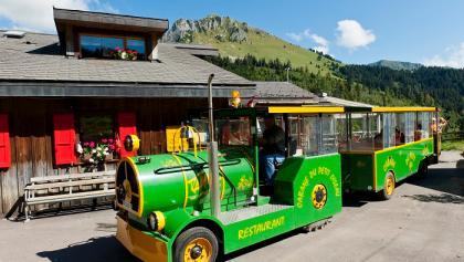 Tiny train of the Cabane du Petit Oiseau